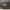 Kujira 1440 wing set