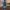 USED Fanatic FreeWave 75 TE 2021 Windsurf Board
